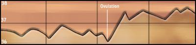 Les courbes de température Courbe10