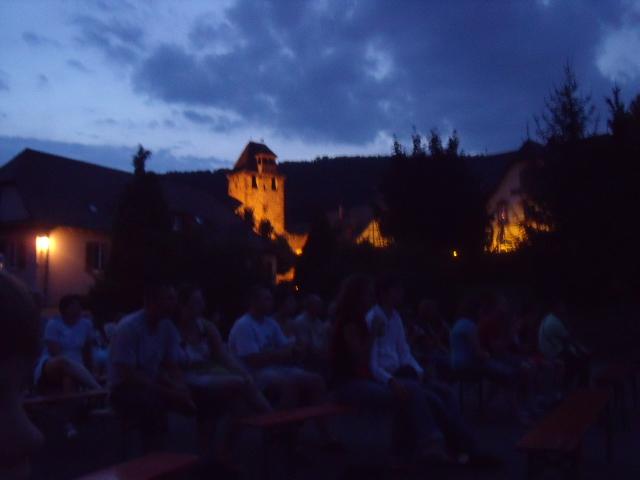 Cinéma en plein air au Freihof à Wangen le vendredi 7 août 2009 à la tombée de la nuit.. Dscf5711