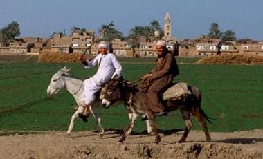 مصر كما اراها بعينى + صور هدية لكل العرب Wd001711