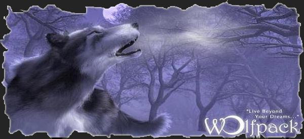 Alianza Wolfpack