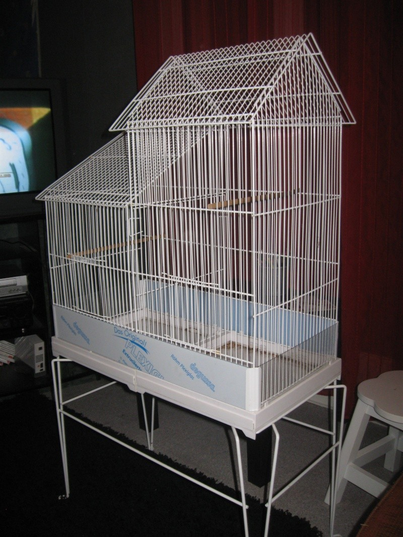 voila la cage de chipie Photo10
