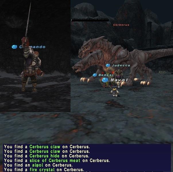 Cerberus, Adamantoise 11/11/09 Algol_15
