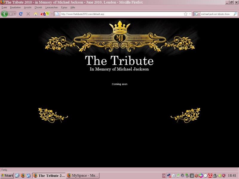 Website Tribute 2010 Tribut10