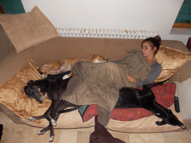 Posture originale pour dormir....et chez vous c'est comment??? - Page 6 06110