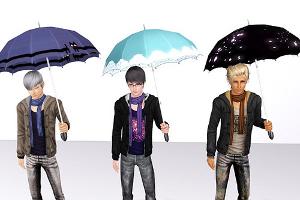 Зонты Imag1213