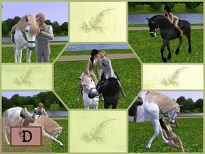 Позы с животными - Страница 2 Image289