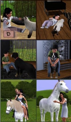 Позы с животными - Страница 2 Image459