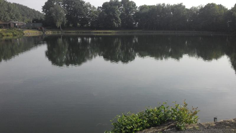 nouvel étang Première approche Elle_210