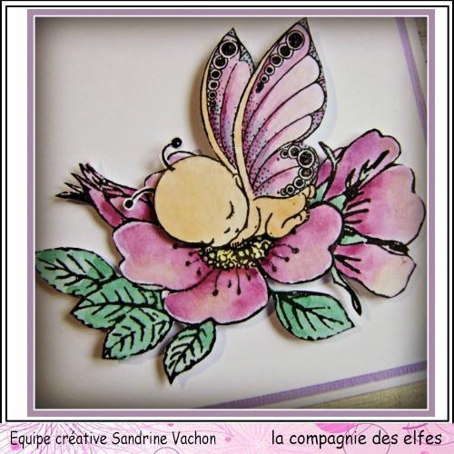 SPECIAL BEBE DE SANDRINE VACHON à programmer Carte204
