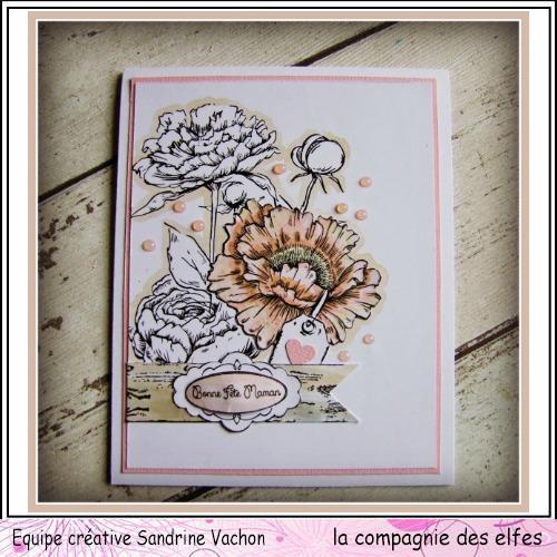 Carte fête des mères  26 mai 3/3 ....A programmer . Carte219