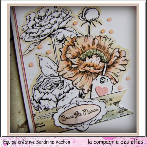 Carte fête des mères  26 mai 3/3 ....A programmer . Carte220