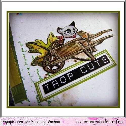 pages scrapbooking septembre Dscf9110