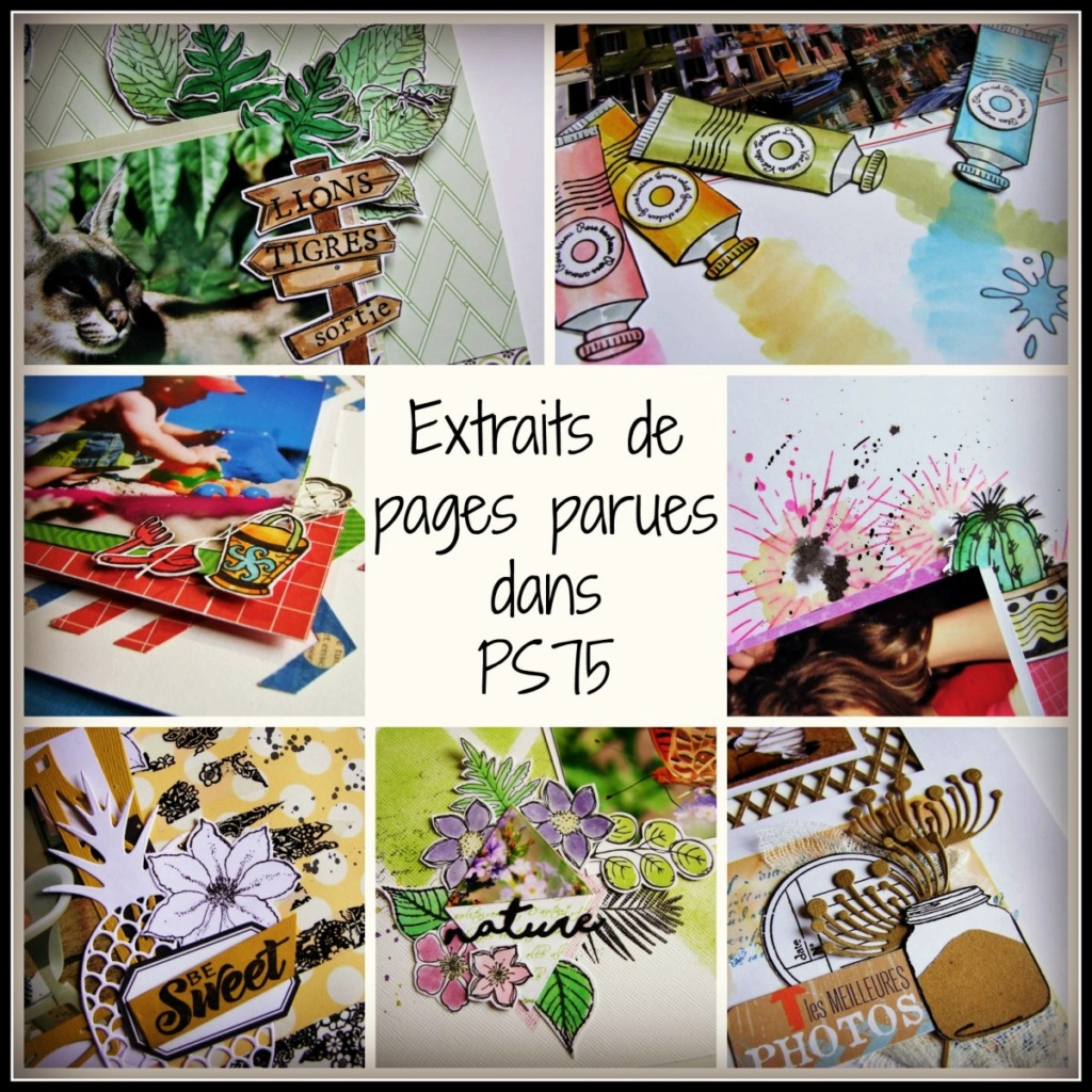 Passion Scrapbooking n°75 Ps75_e10