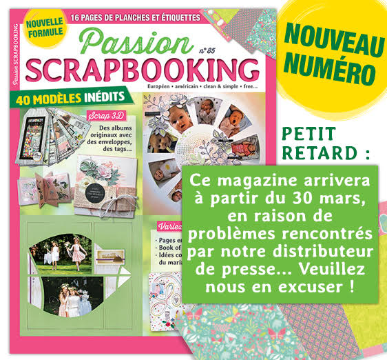 Passion Scrapbooking n°85 Unname19
