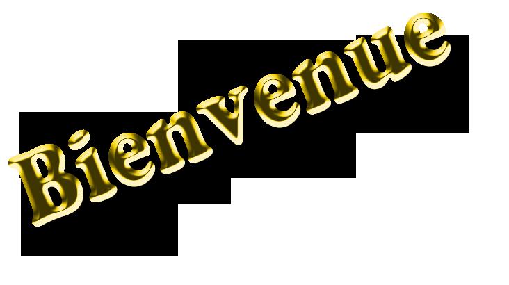 presentation Bienve10