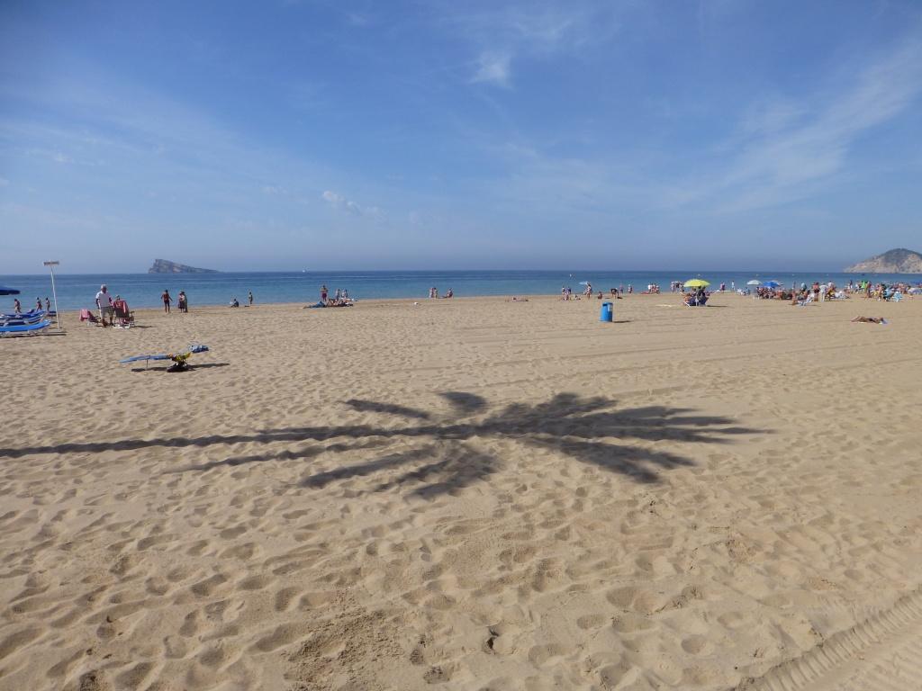 Spain, Costa Blanca, Benidorm, Levente Walk in the Sun 2013 41210