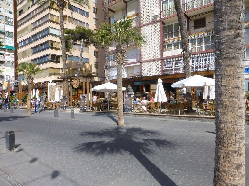 Spain, Costa Blanca, Benidorm, Levente Walk in the Sun 2013 42410