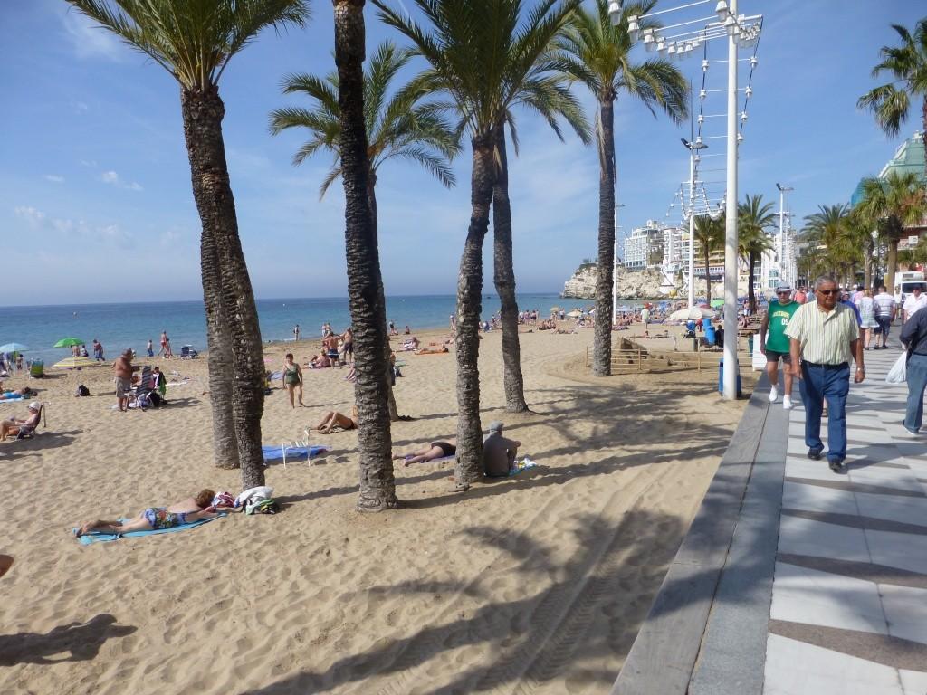 Spain, Costa Blanca, Benidorm, Levente Walk in the Sun 2013 43410