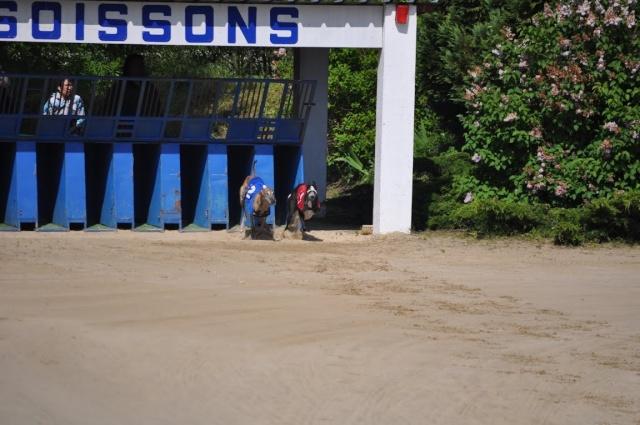 Championnat de France de travail - SOISSONS - 25/05/2013 Dsc_0323
