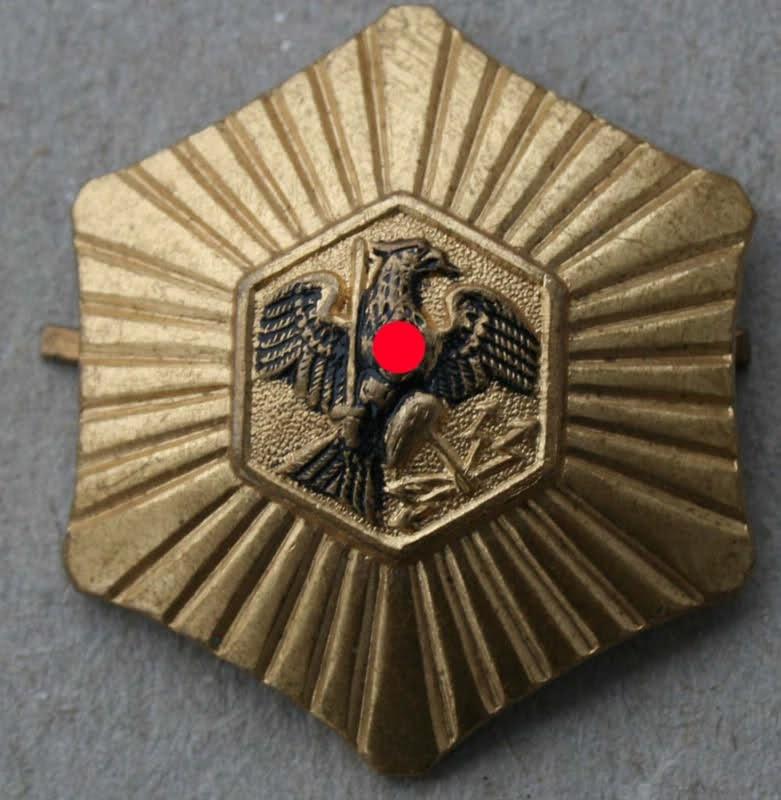 La Sturmabteilung,SA,la section d'assaut de la NSDAP, Feldja12