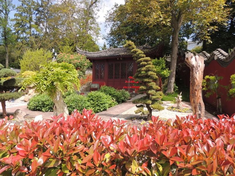 Le Parc Pairi Daiza en Belgique 17210