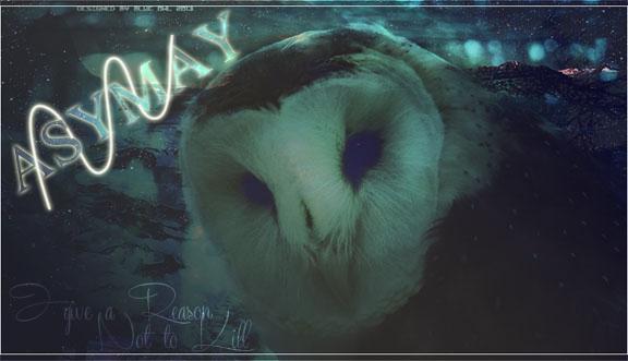 Blue Owl Workshop V.2 010gra10
