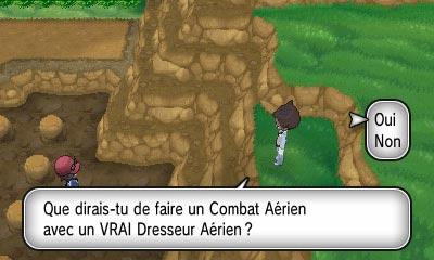 Pokemon [JV] Lune & Soleil, Pokemon Go Magicarpe Jump ... - Page 2 Aerien10