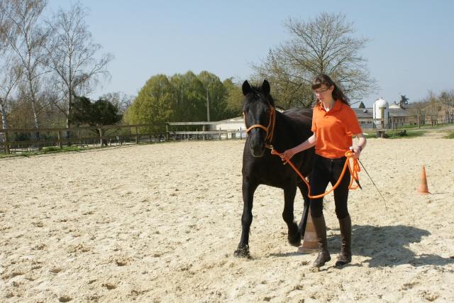 Litchies et Anthéa, ONC TRAIT sauvées par Octavie!!!!!!!(Fevr 2012) - Page 26 Dsc02812