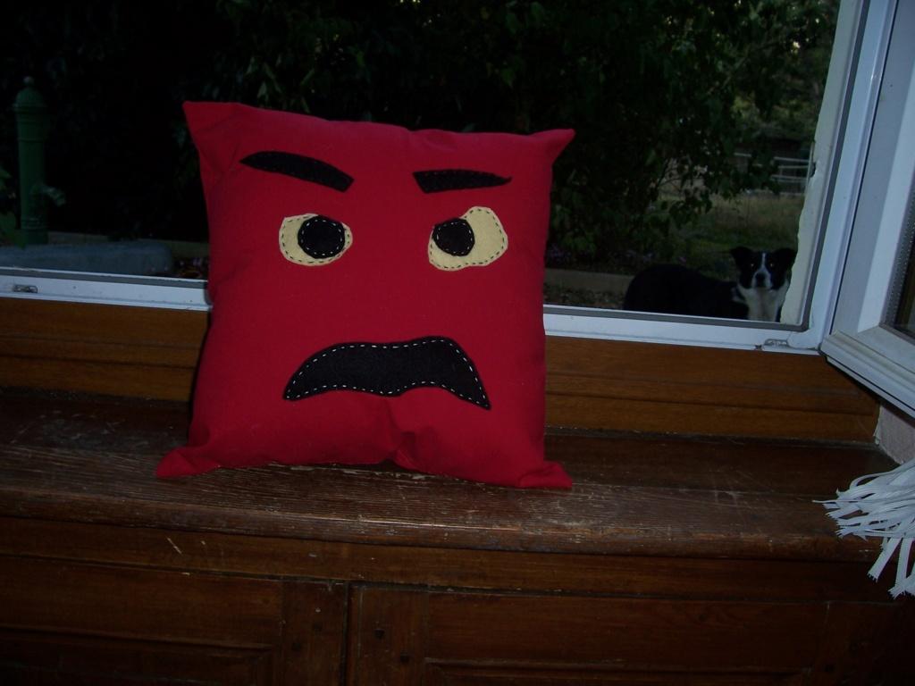 coussin de colère 100_3214