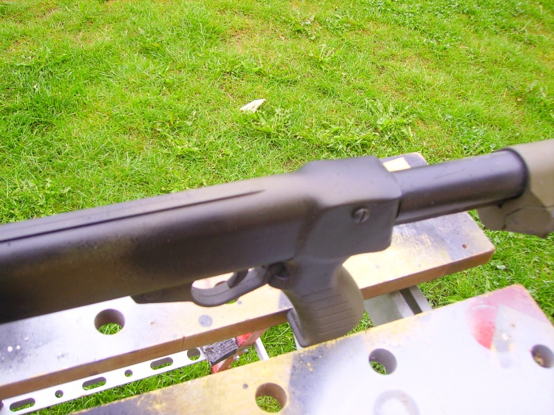 spas 12 avec crosse M4 Imgp0315