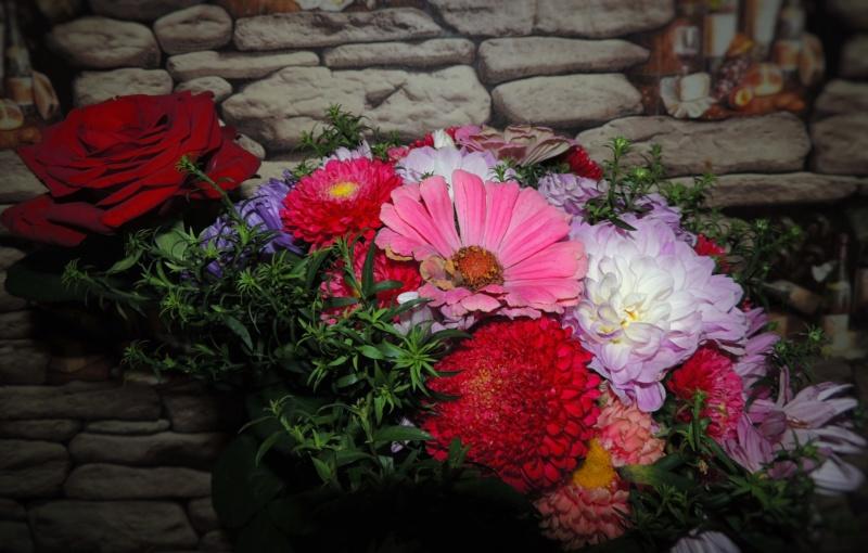 Фотографии цветов и деревьев - Страница 17 Dscn9819