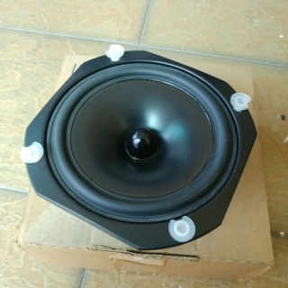 TDL Electronic RTL 2 and RTL 3 Mid Bass Driver (NOS) 20180851