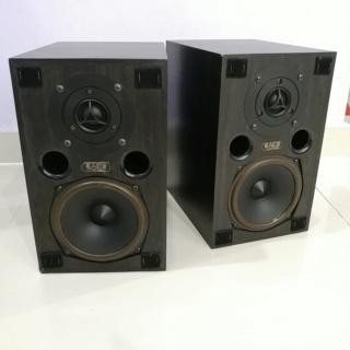 Acoustic Energy AE200 bookshelf speaker 20190222
