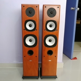 Acoustic Energy AE Aegis EVO 3 floorstand 3 Ways Speaker 20191233