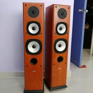 Acoustic Energy AE Aegis EVO 3 floorstand 3 Ways Speaker 20191234