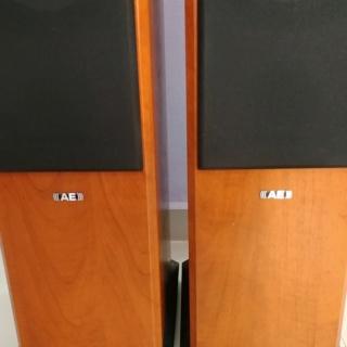 Acoustic Energy AE Aegis EVO 3 floorstand 3 Ways Speaker 20191236