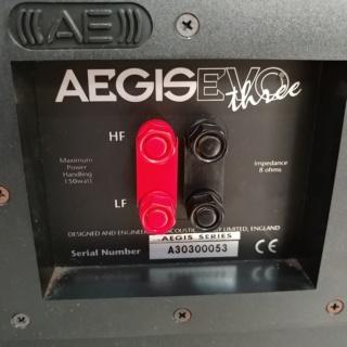 Acoustic Energy AE Aegis EVO 3 floorstand 3 Ways Speaker 20191237