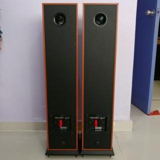 Acoustic Energy AE Aegis EVO 3 floorstand 3 Ways Speaker 20191238