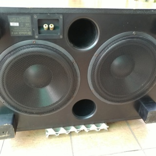 McIntosh USA Made HT-2 Dual 12 inch Passive Subwoofer 20200124
