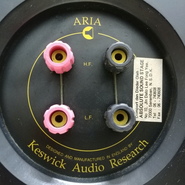 Keswick Audio Research ARIA England Made Bookshelf Stereo Speaker 20210221