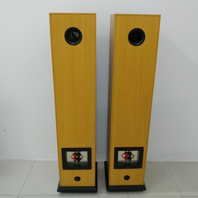 Acoustic Energy AE Aegis 3 floorstand 3 Ways Speaker 20210313