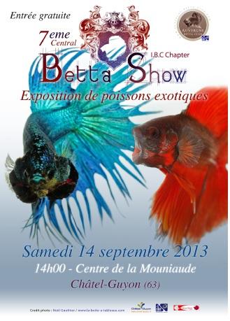 Central Betta Show du 13 au 15 septembre 2013 Betta211