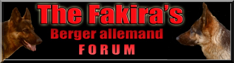 THE FAKIRA's berger allemand forum - Portail Bannia12
