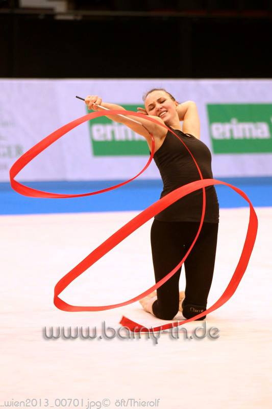 Championnat d'Europe 2013 97180110