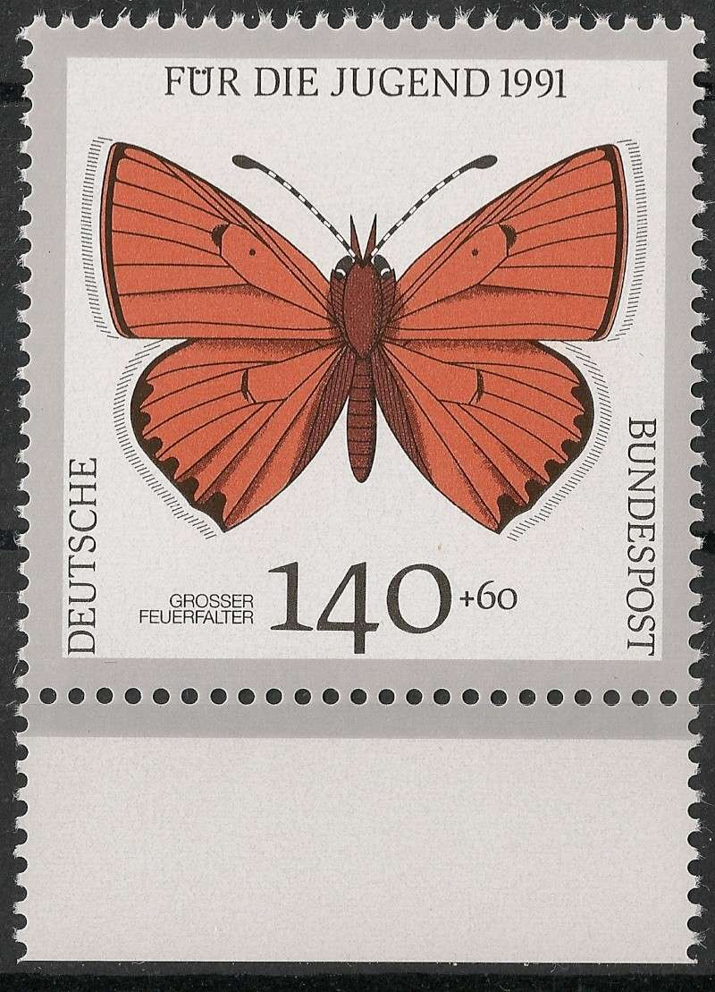 Schmetterlinge - Seite 3 Scanne26