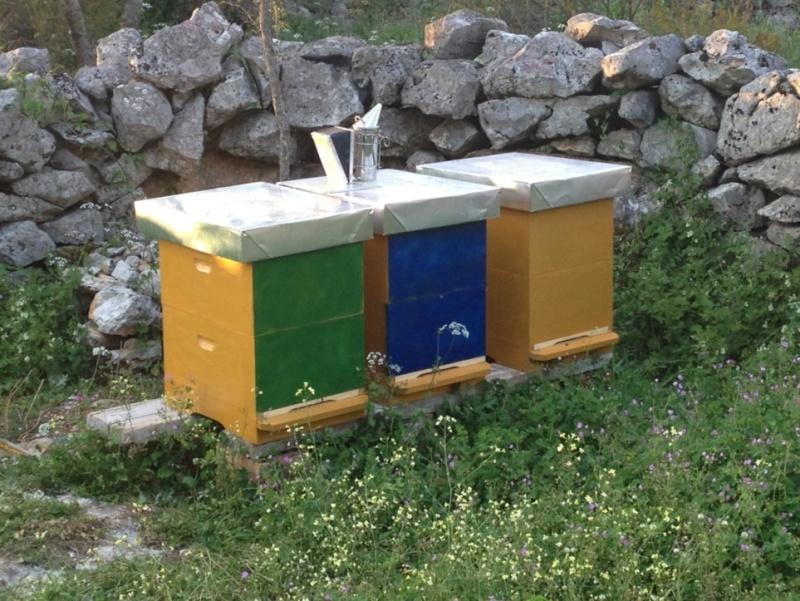 Pčelarstvo Imageo10