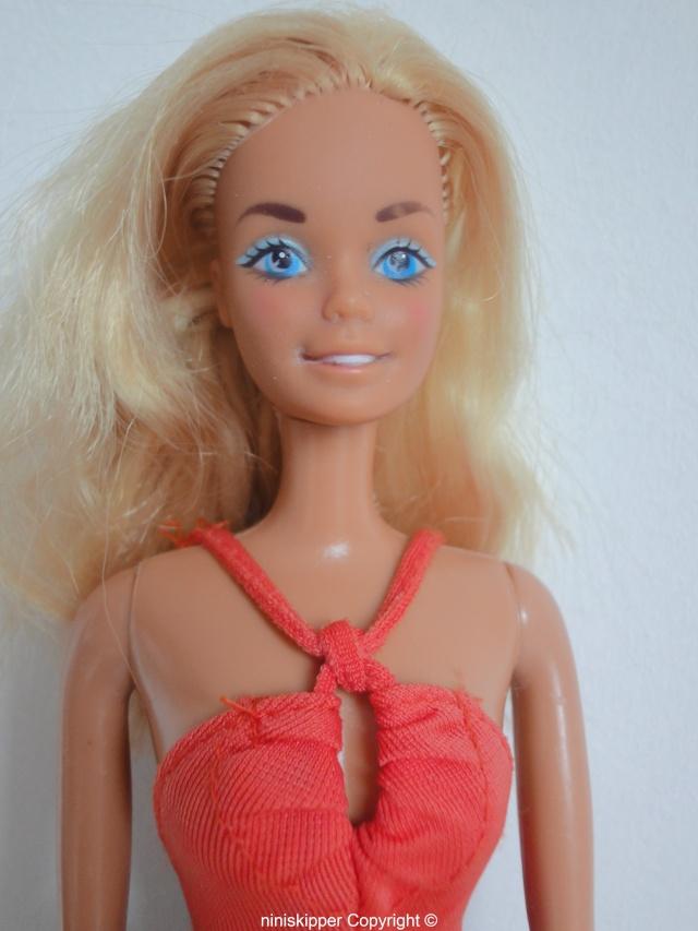 Ma collection Barbie & Skipper 80/90 Dsc06271
