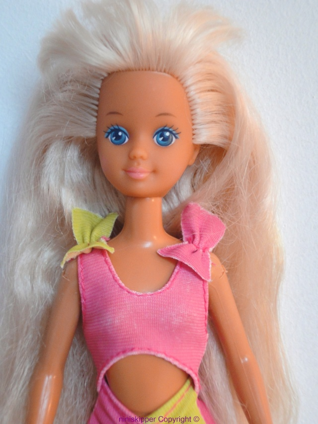 Ma collection Barbie & Skipper 80/90 Dsc06313