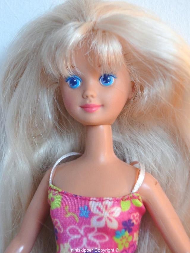 Ma collection Barbie & Skipper 80/90 Dsc06320