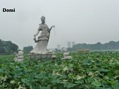 La Chine sac au dos (26) - Sur la route des anciennes capitales: Nanjing (南京) Domi2611